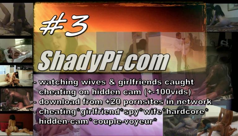 3-shadypi